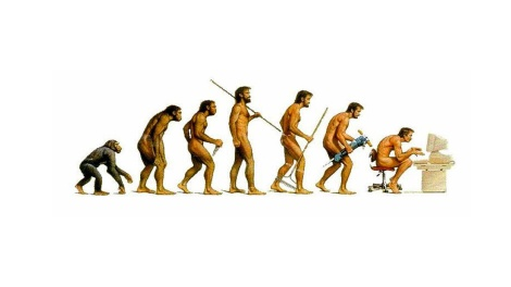 024_Evolution