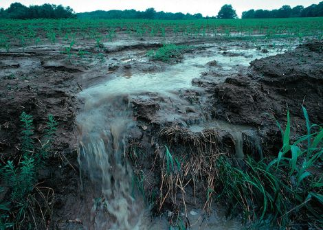 1280px-Runoff_of_soil_&_fertilizer